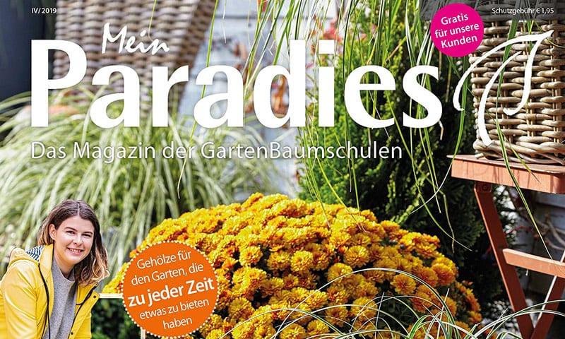 Teaser Mein Paradies Magazin