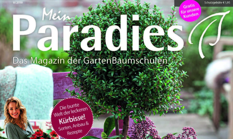 E-Paper Mein Paradies